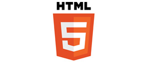 section html5