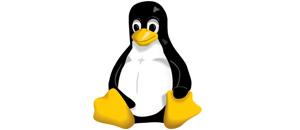 Cómo formatear particiones en Linux con mkfs