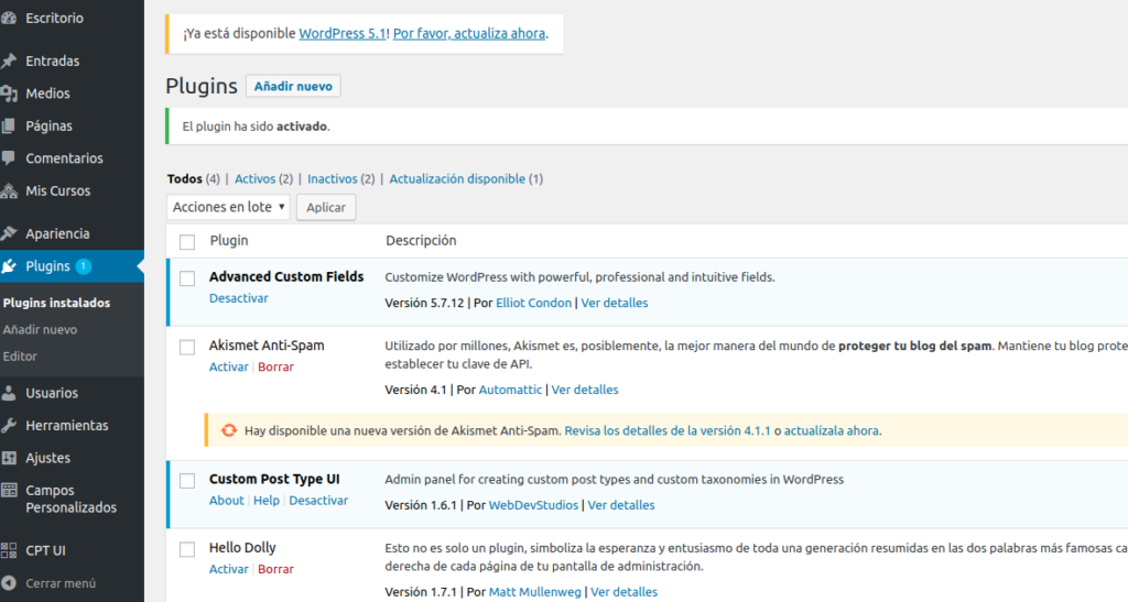 Cómo crear Custom Fields en WordPress
